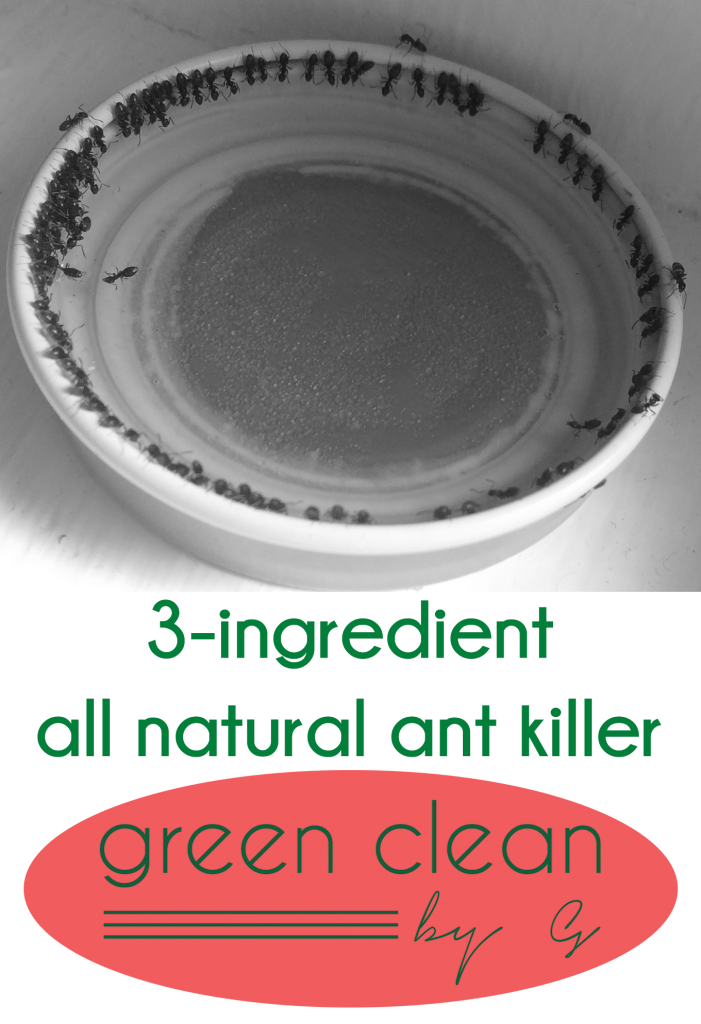 3-Ingredient All Natural Ant Killer